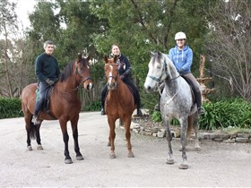 Academy of Dressage - Accommodation Perth