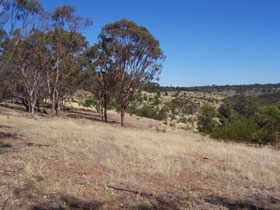 Onkaparinga River National Park