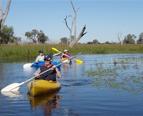 Marsh Meanders - Accommodation Perth