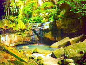Carnarvon Gorge Carnarvon National Park - Accommodation Perth
