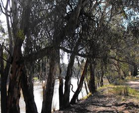 Mia Forest Drives Narrandera - Accommodation Perth