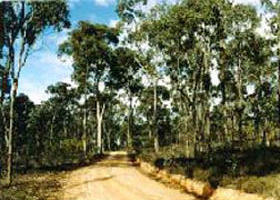 Paddys Ranges State Park - Accommodation Perth