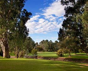 Commercial Golf Course - Accommodation Perth