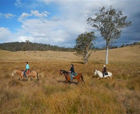 Chapman Valley Horse Riding - Accommodation Perth