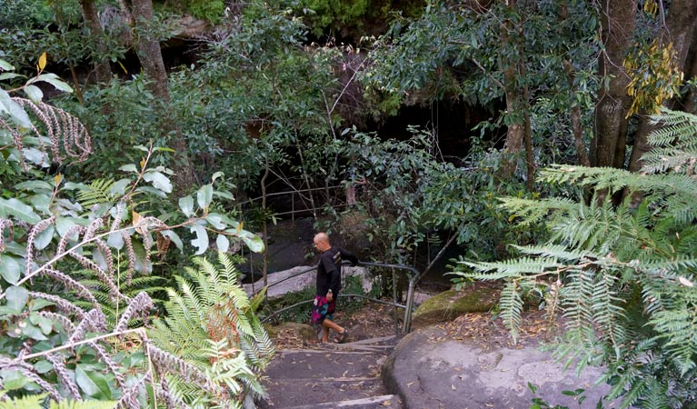 Leura Cascades Fern Bower - Accommodation Perth