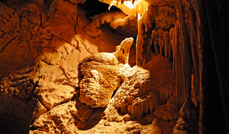 Fig Tree Cave - Accommodation Perth