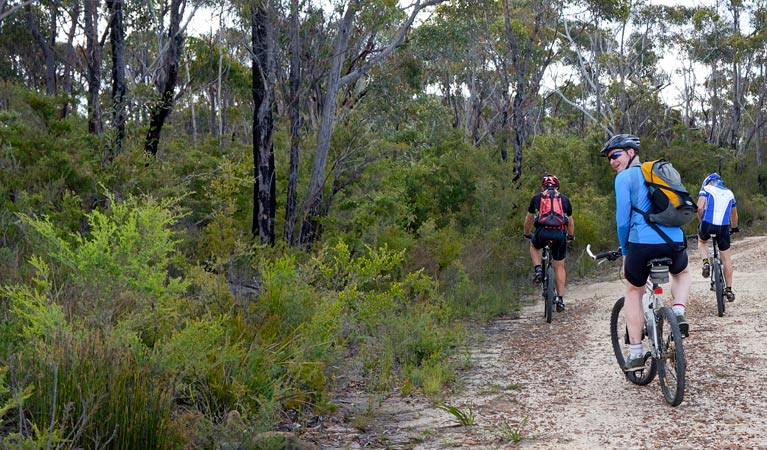McMahon's Point ride - Wentworth Falls - Accommodation Perth