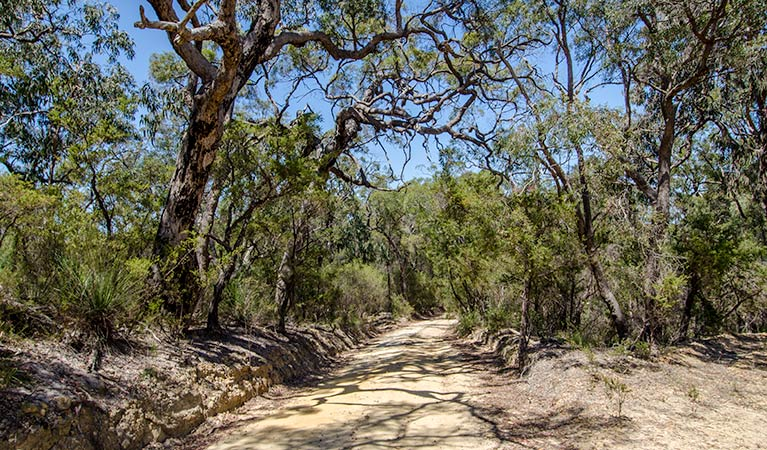 Howes trail - Accommodation Perth