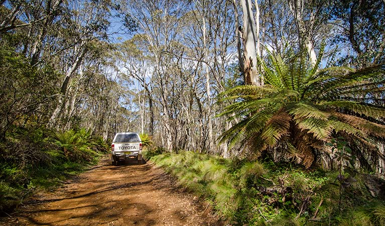 Barrington trail - Accommodation Perth