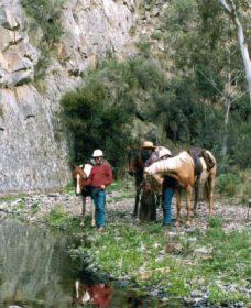 Yarramba Horse Riding - Accommodation Perth