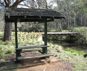 Barrington Tops State Forest - Accommodation Perth