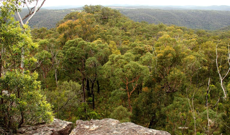 Mount Olive lookout - Accommodation Perth