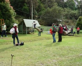Forest of Tranquillity - Australian Rainforest Sanctuary - Accommodation Perth