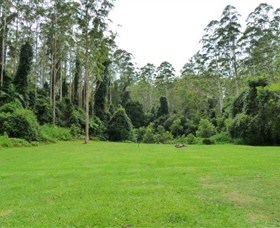 Kerewong State Forest - Accommodation Perth