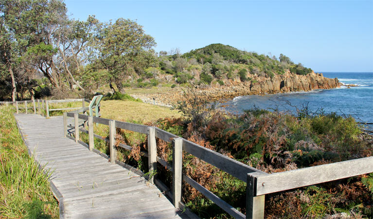 Mimosa Rocks walking track - Accommodation Perth