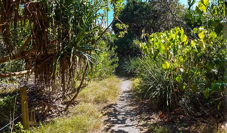 North Head walking track - Accommodation Perth