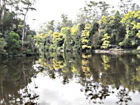 Arthur River - Accommodation Perth