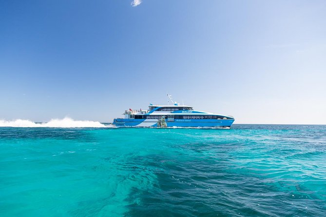 Fremantle to Rottnest Island Roundtrip Ferry Ticket - Accommodation Perth
