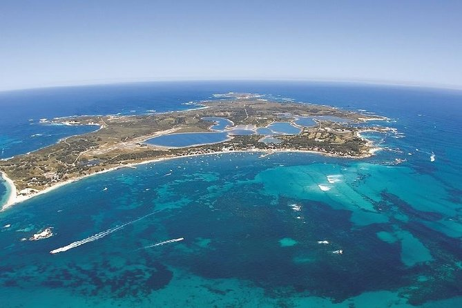 Rottnest Island ECO E Bike Tour - Accommodation Perth