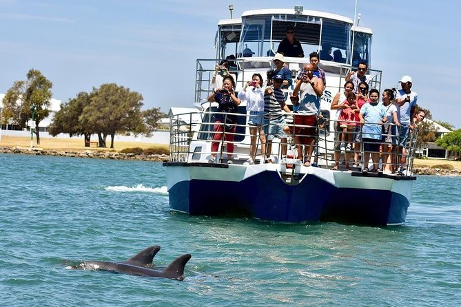Mandurah Dolphin and Scenic Canal Cruise - Accommodation Perth