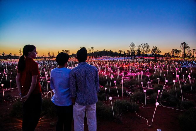 Uluru Field of Light Sunrise Tour - Accommodation Perth