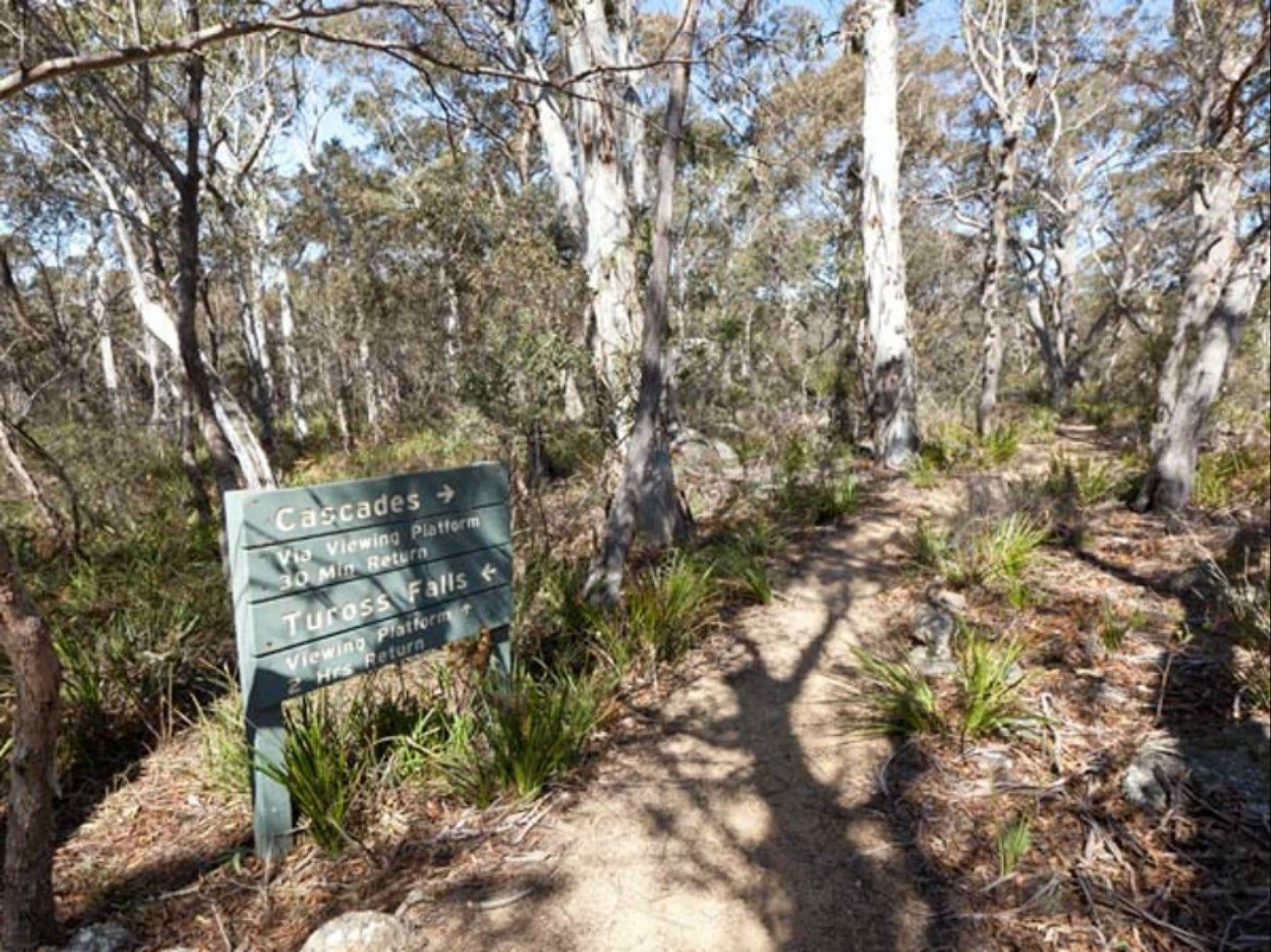 Cascades walking track and viewing platform - Accommodation Perth