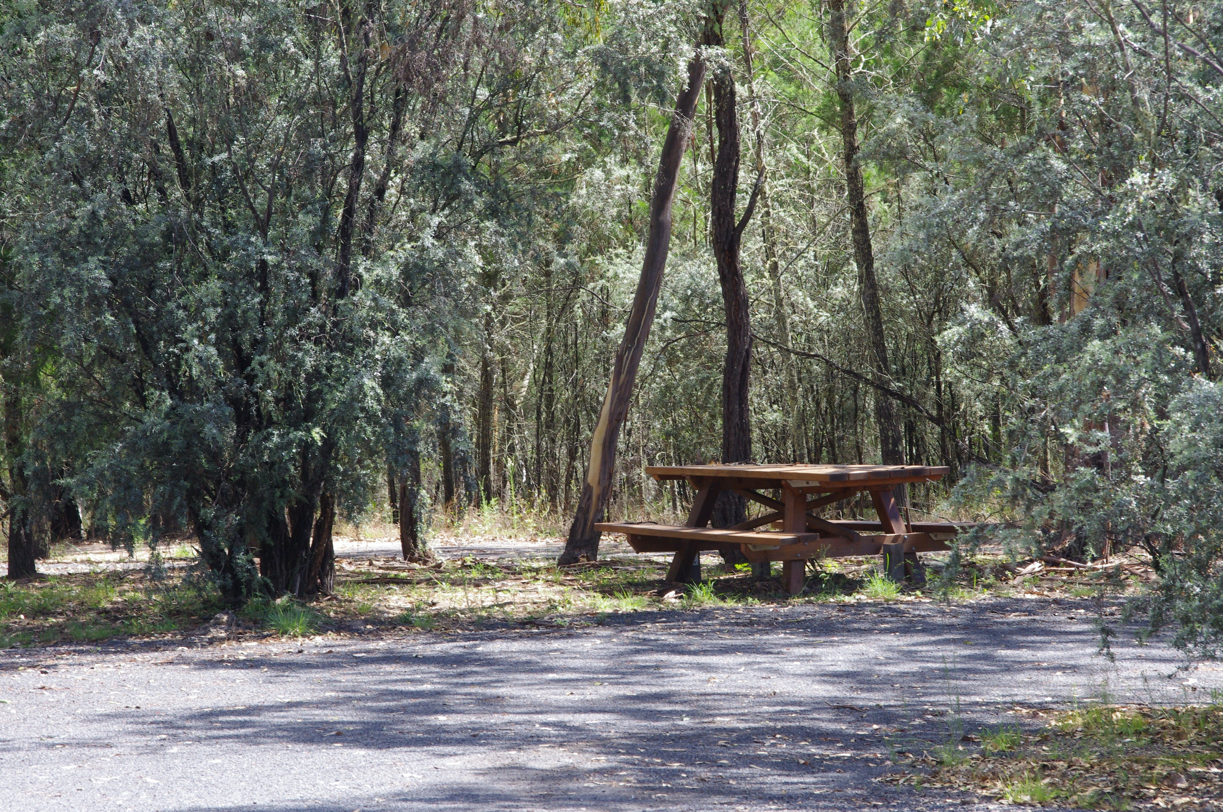 Goonoowigall State Conservation Area - Accommodation Perth