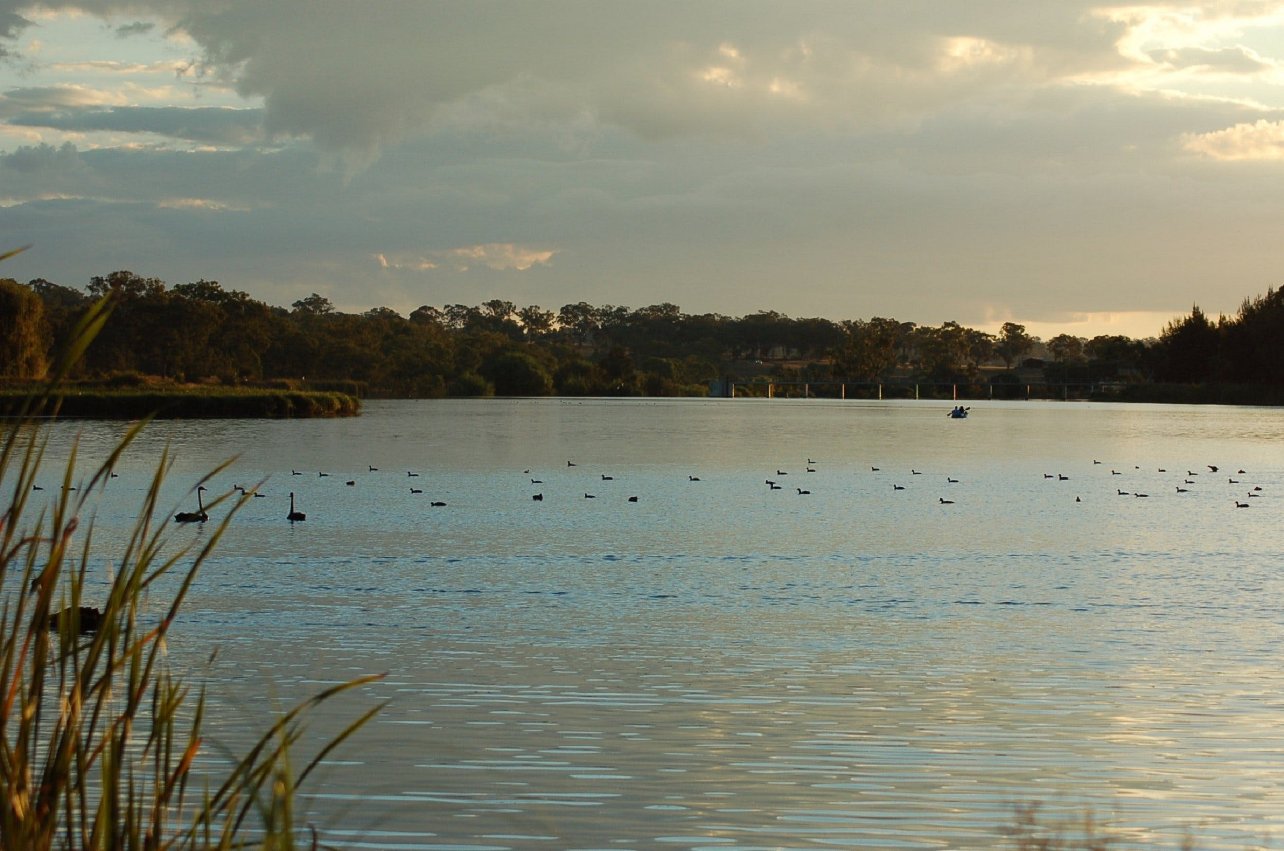 Lake Inverell Reserve - Accommodation Perth