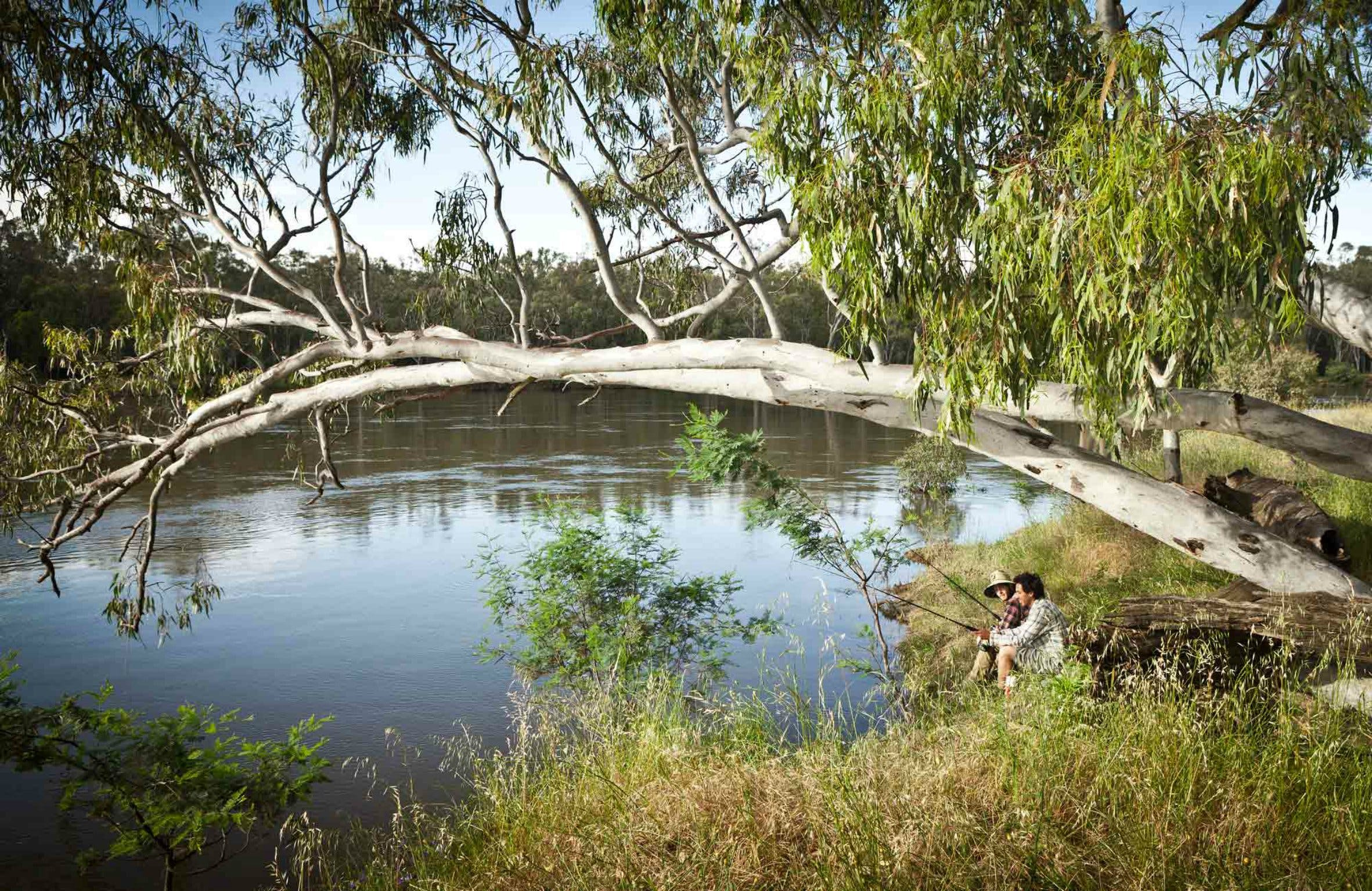 Murray Valley National Park - Accommodation Perth