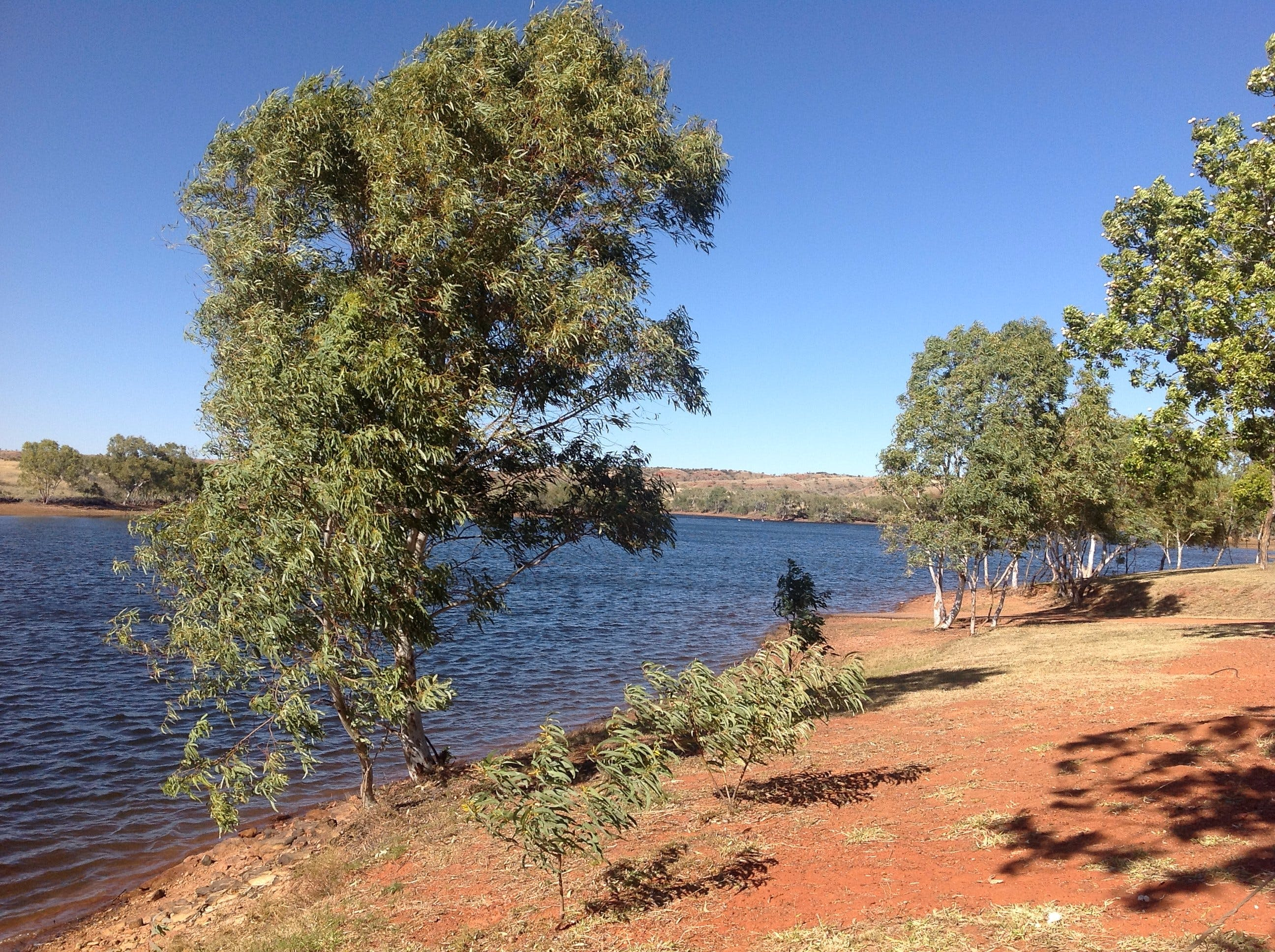 Tingkkarli/Lake Mary Ann - Accommodation Perth