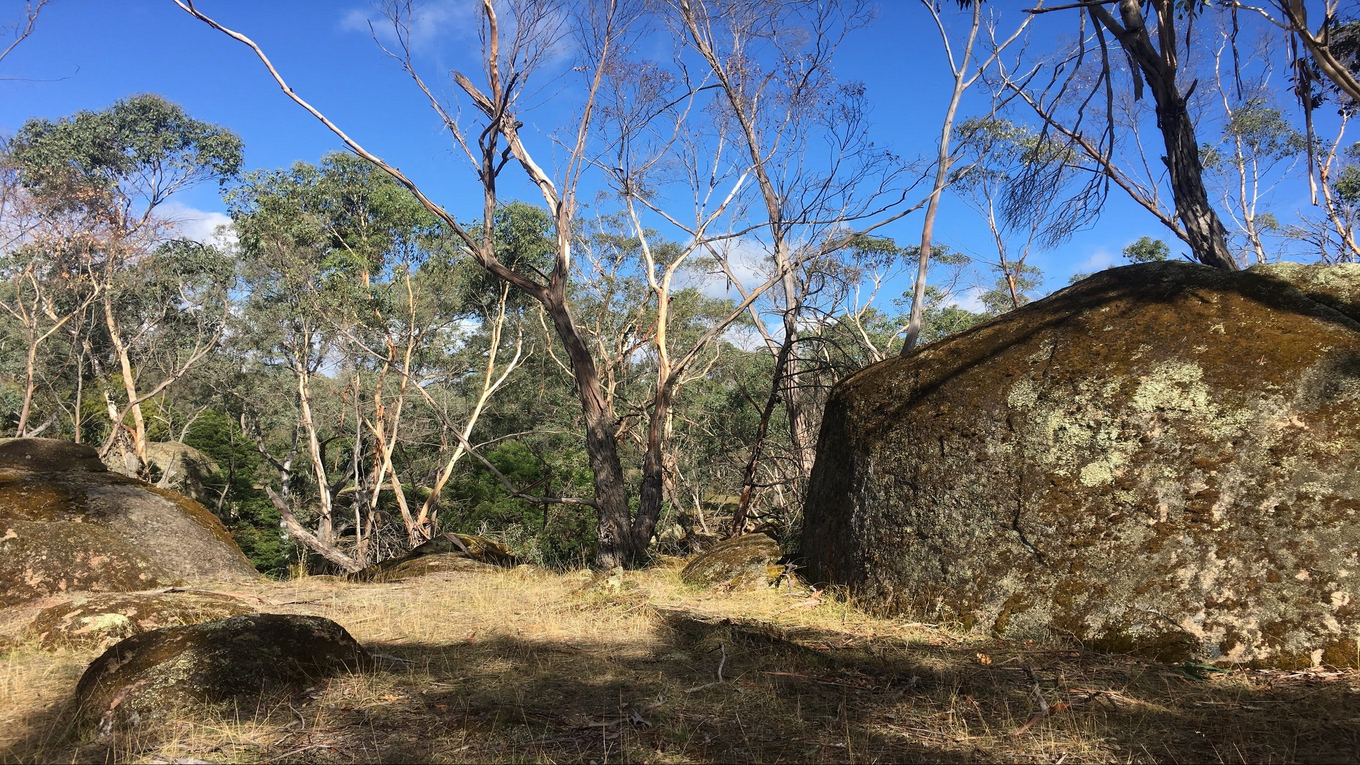 Bailey's Rocks - Dergholm State Park - Accommodation Perth