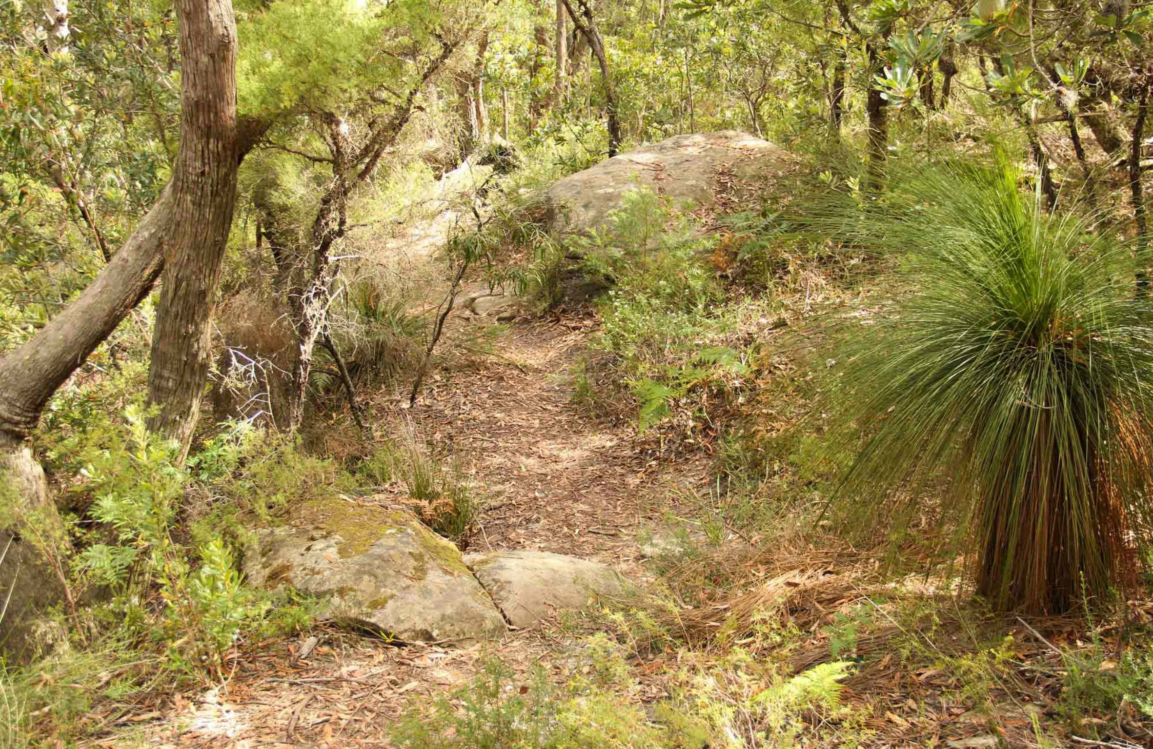 Mount Carnarvon Walking Track - Accommodation Perth