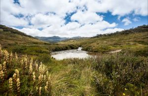 Cascade Hut trail - Accommodation Perth