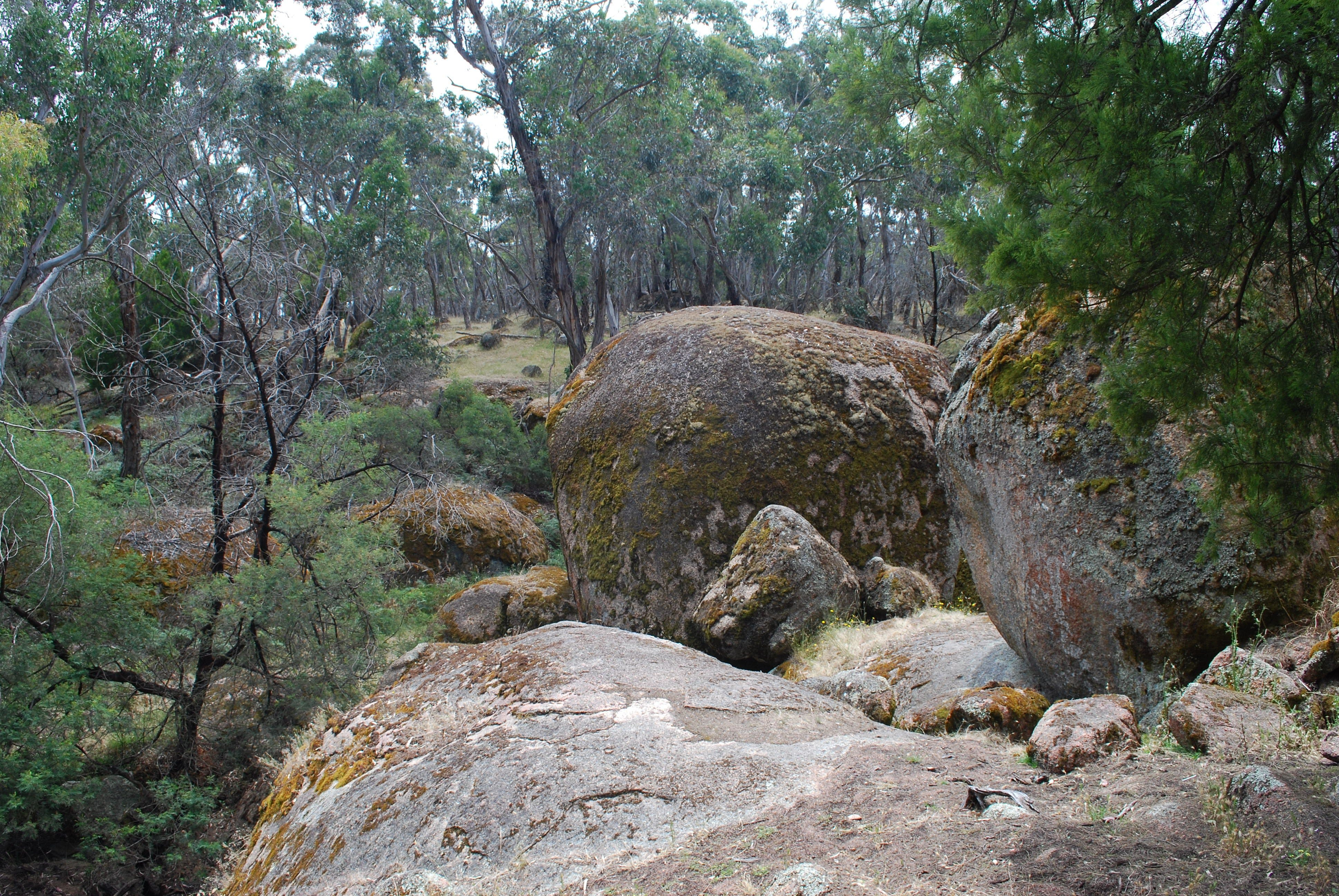 Dergholm State Park - Accommodation Perth