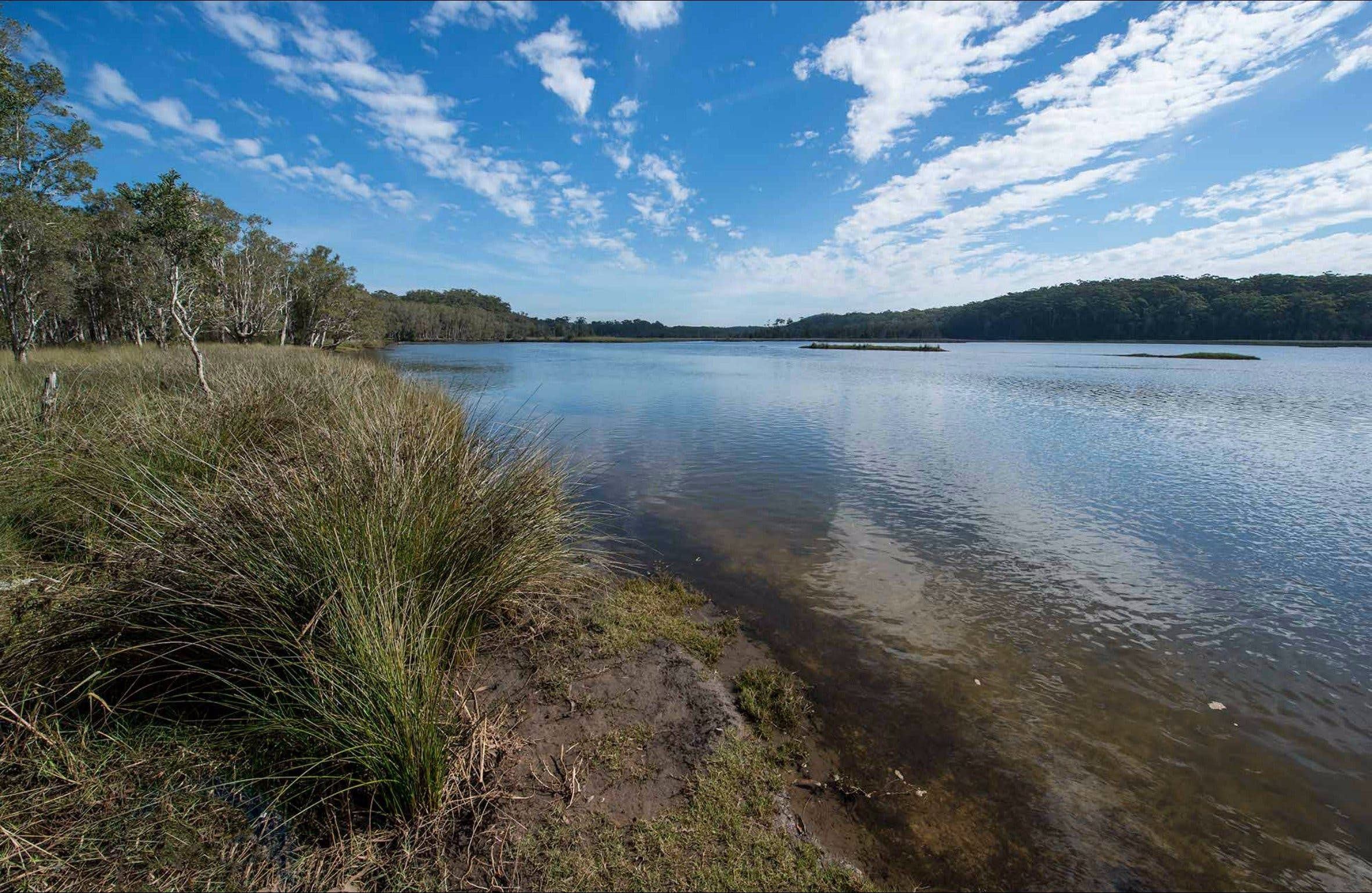 Lake Innes Nature Reserve - Accommodation Perth