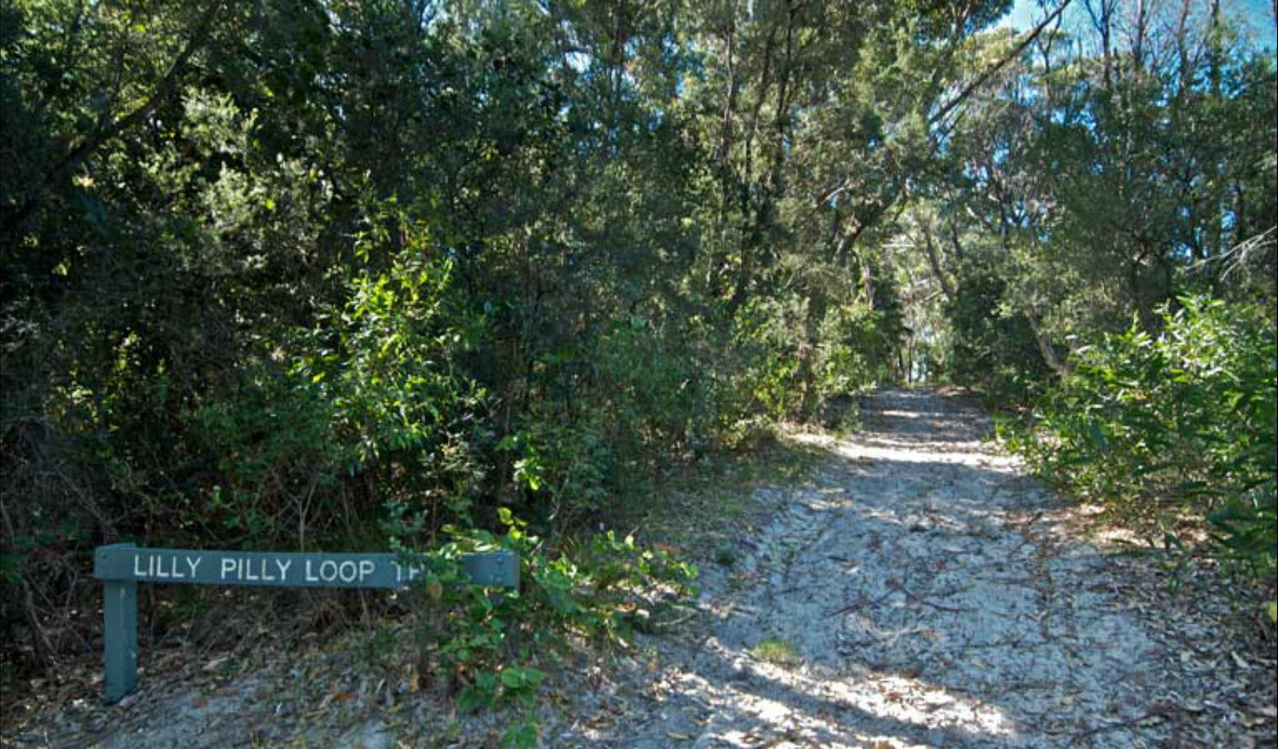 Lillypilly loop trail - Accommodation Perth