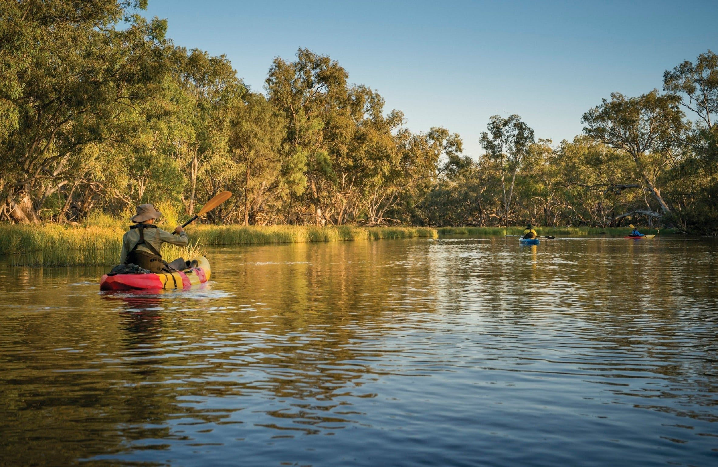 Macquarie Marshes Nature Reserve - Accommodation Perth