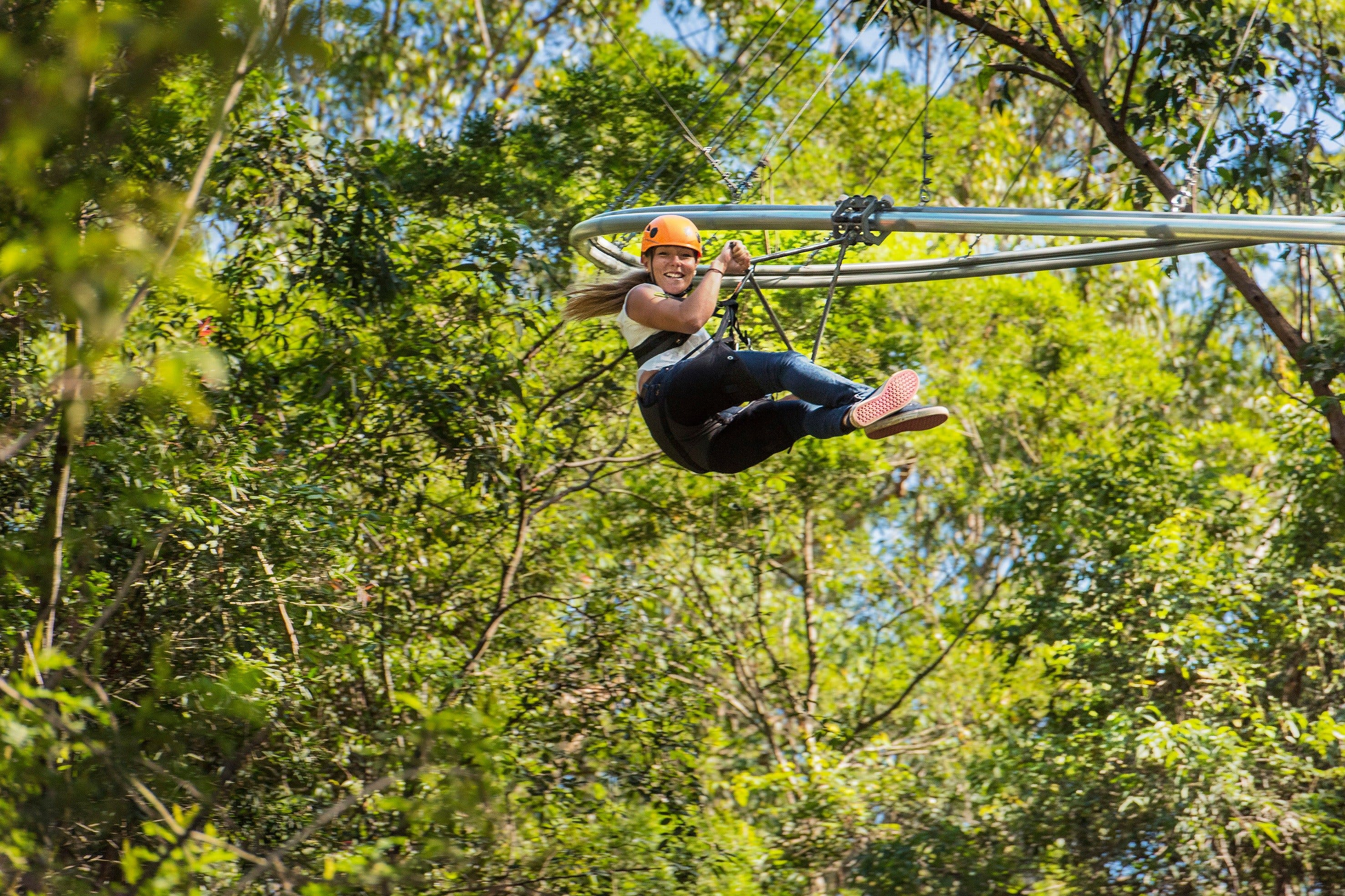TreeTop Crazy Rider - Accommodation Perth