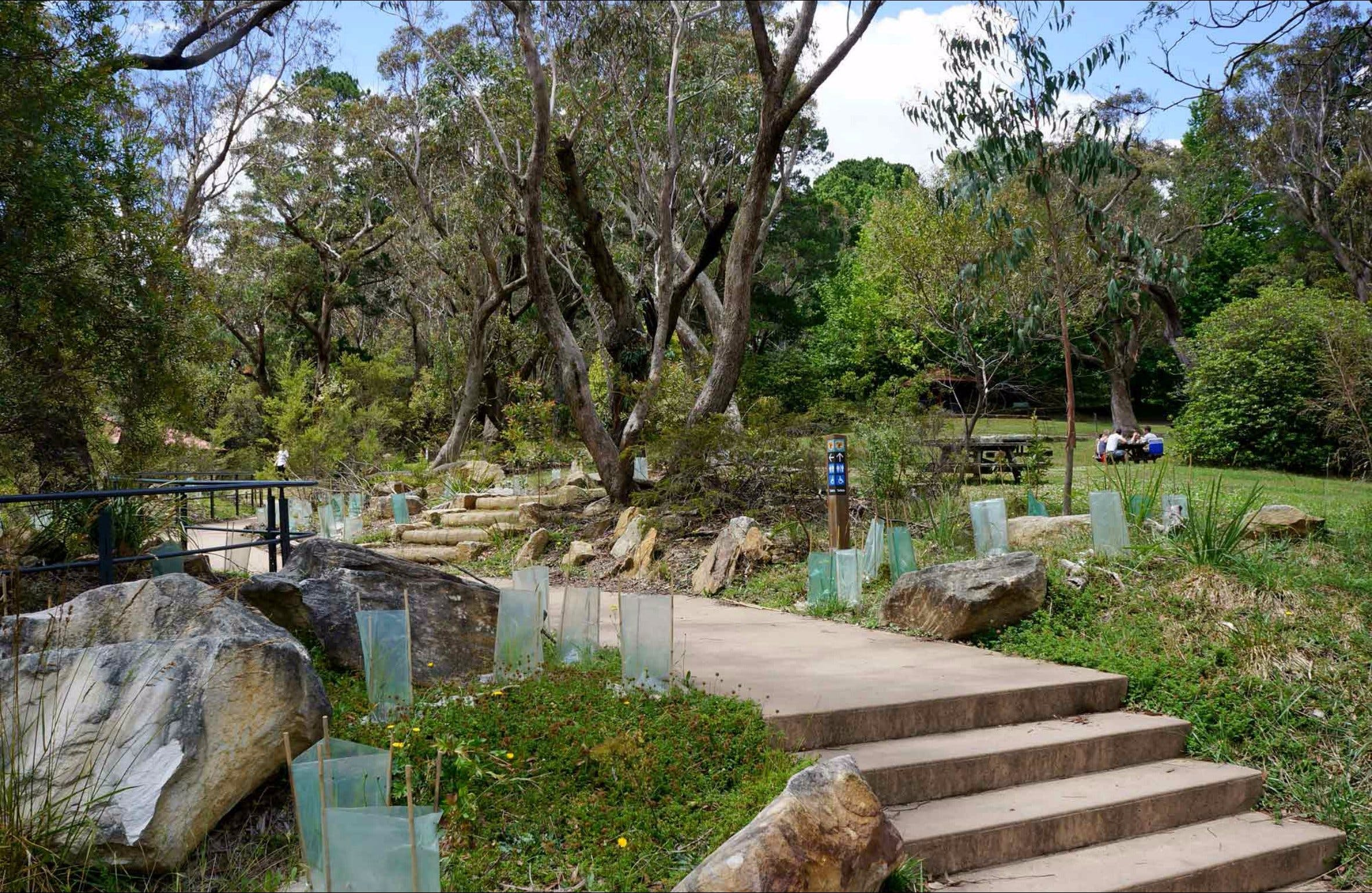 Wentworth Falls picnic area - Accommodation Perth