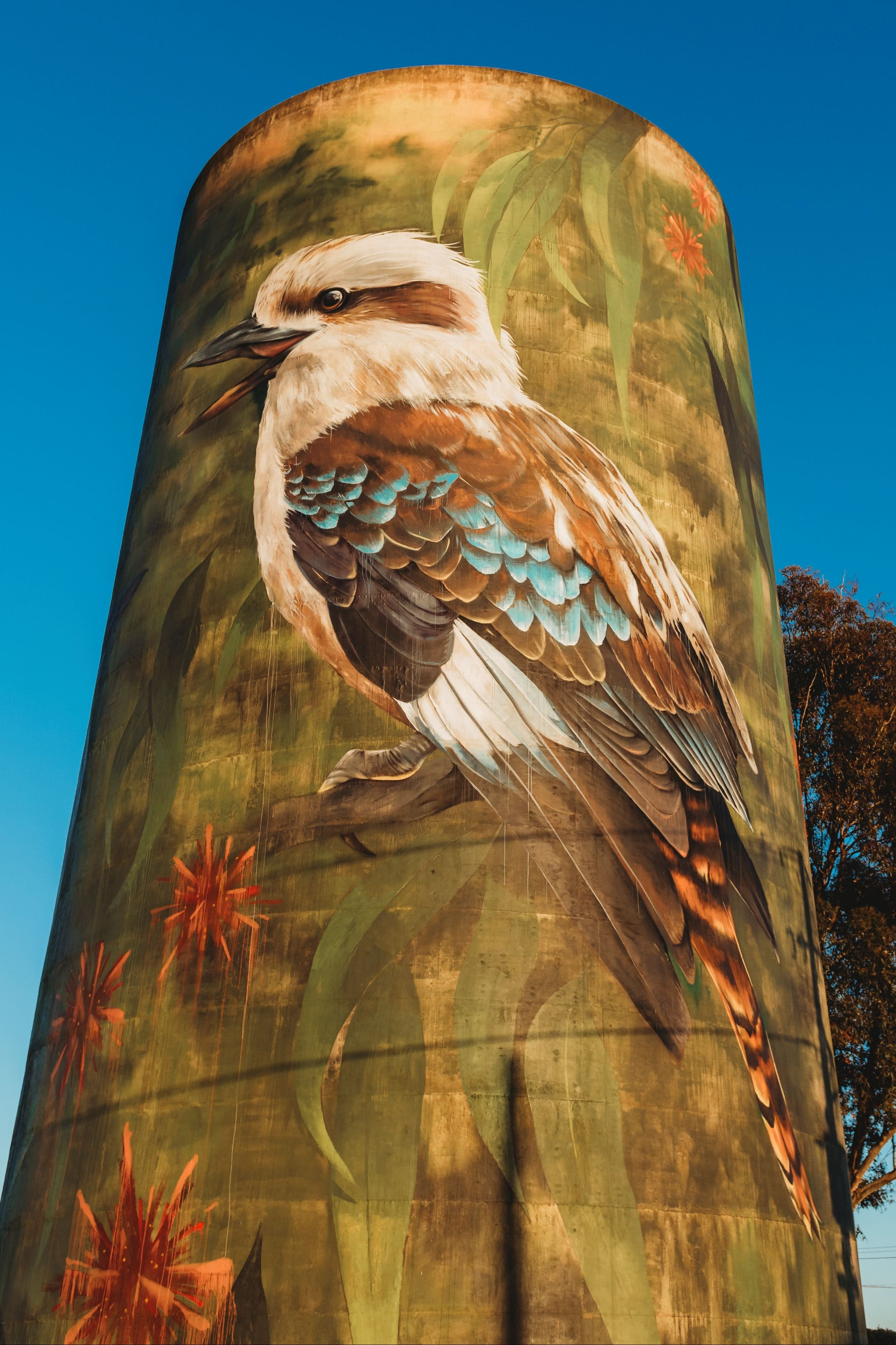 Deniliquin Water Tower Mural - Accommodation Perth