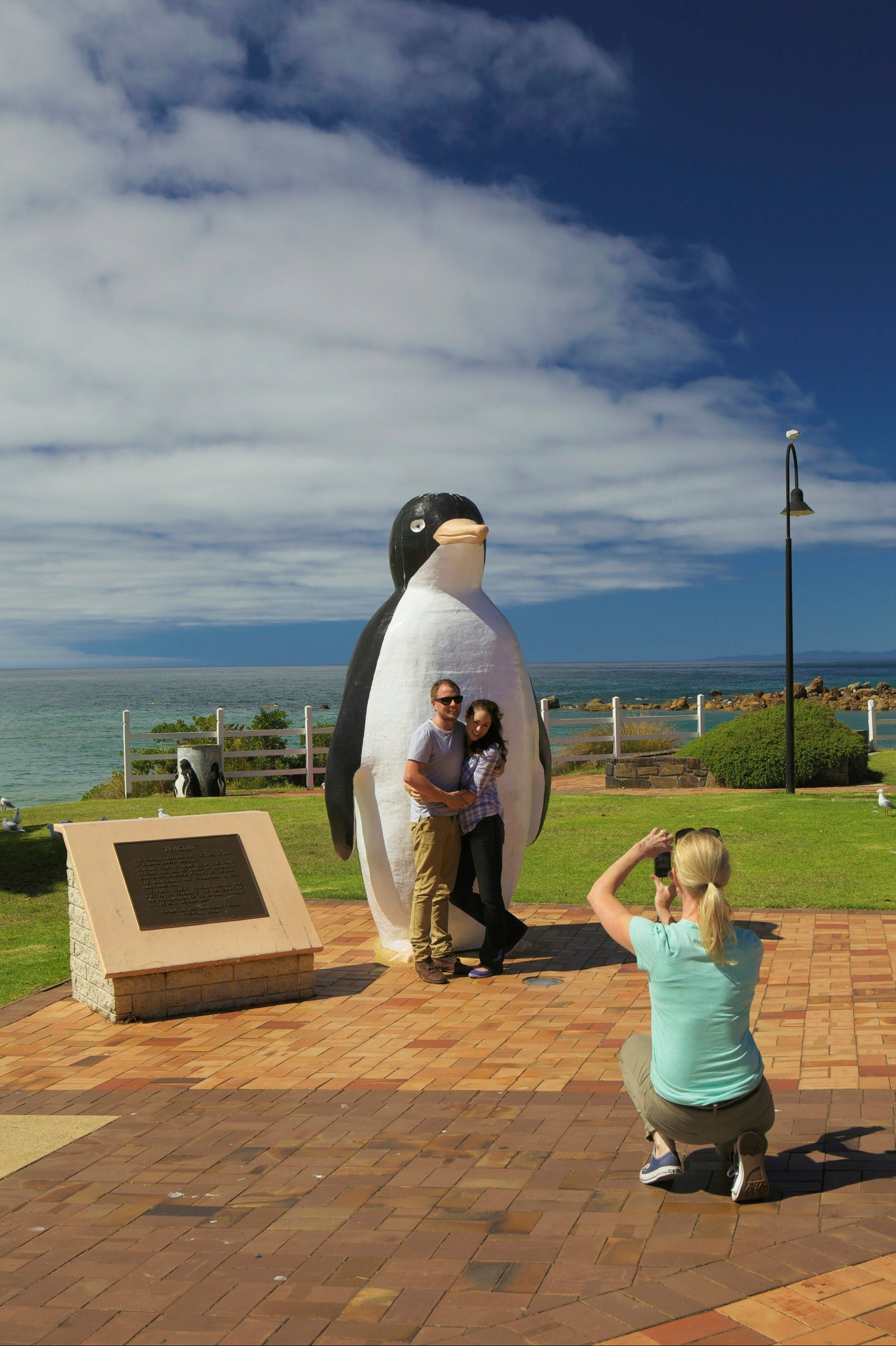 Penguin - Accommodation Perth