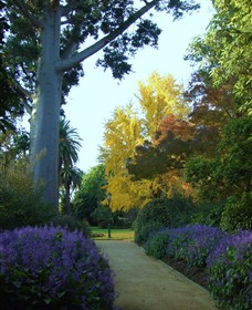Albury Botanic Garden - Accommodation Perth