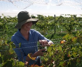 Kingsdale Wines - Accommodation Perth