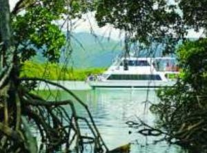 Cairns Harbour Cruises - Accommodation Perth