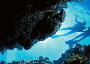 Deep Sea Divers Den - Accommodation Perth