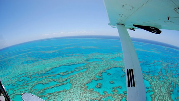Air Whitsunday Day Tours - Accommodation Perth