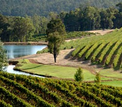 Brookhampton Estate Vineyard - Accommodation Perth