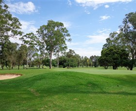 Singleton Golf Club - Accommodation Perth