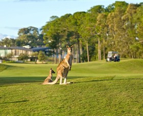 Sanctuary Cove Golf and Country Club - Accommodation Perth