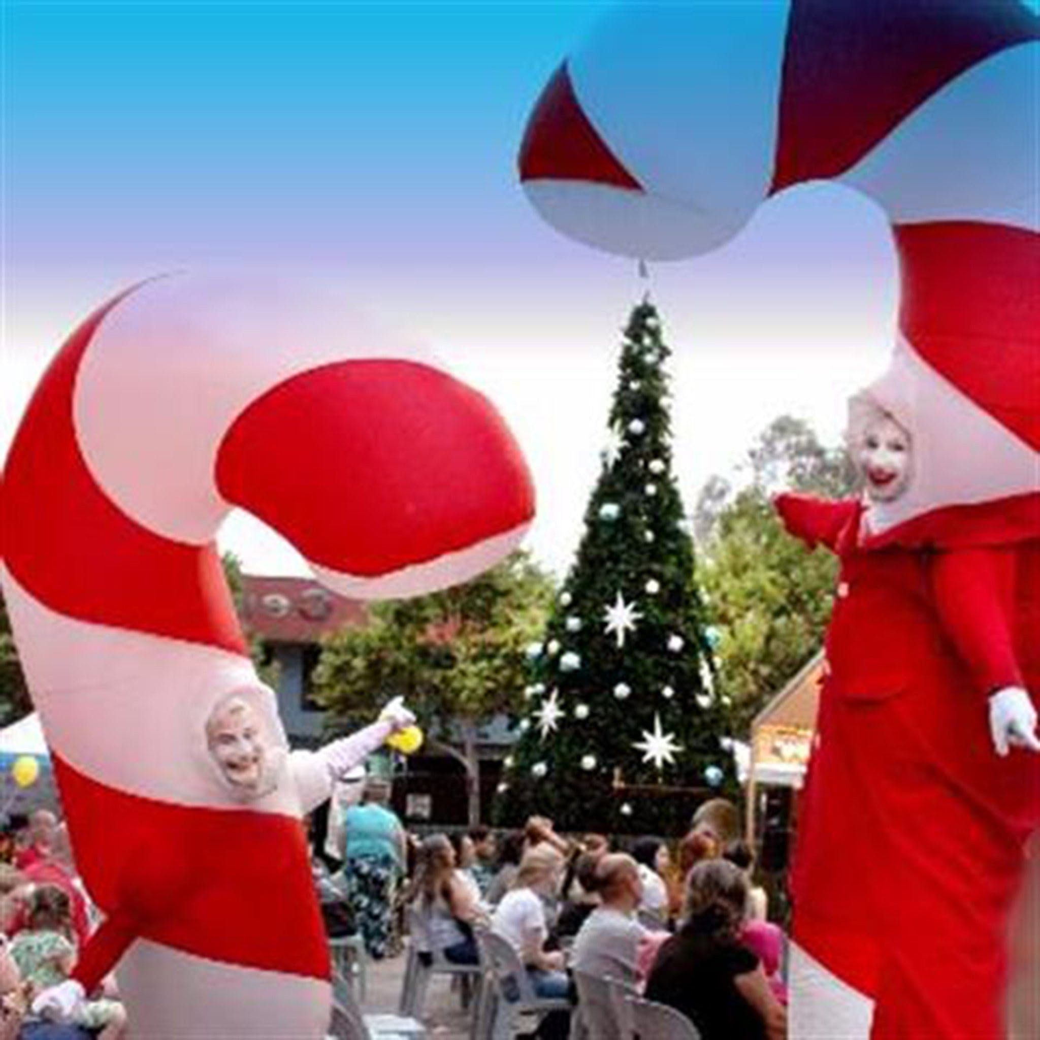 Blacktown Christmas Light Up Concert - Accommodation Perth